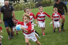 Junior Rugby Kicks Off 00499