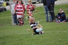 Junior Rugby Kicks Off 00512