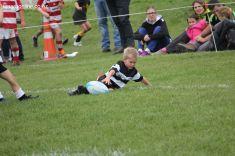 Junior Rugby Kicks Off 00513