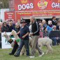 Mackenzie Show Grand Parade0021