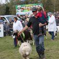 Mackenzie Show Grand Parade0025