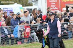 Mackenzie Show Grand Parade 0085