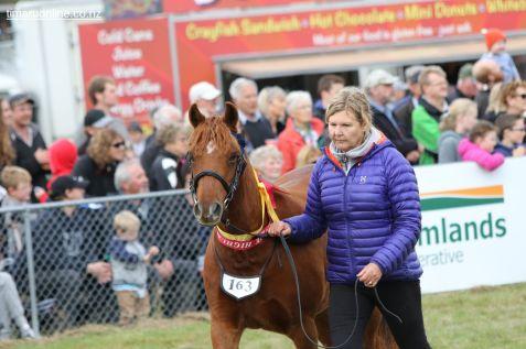Mackenzie Show Grand Parade 0086
