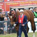 Mackenzie Show Grand Parade0090