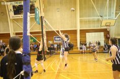 Volleyball Finals 00241