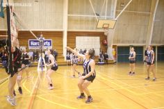 Volleyball Finals 00242