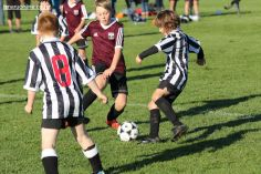 Junior Football 0044
