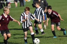 Junior Football 0046
