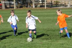 Junior Football 0063