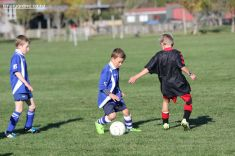 Junior Football 0098