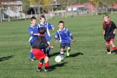 Junior Football 0099