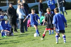 Junior Football 0100