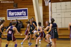 Netball Point v Craighead 0006