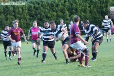 Point v Temuka A 0063