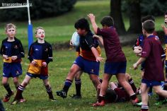 PPRFC Junior Games 0105