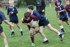 PPRFC Junior Games 0230