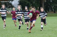 PPRFC Junior Games 0258