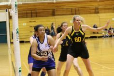 Wednesday Night Netball 0091
