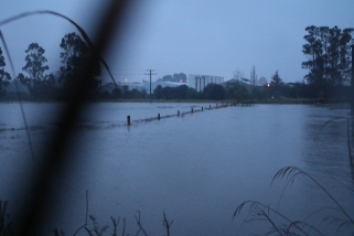 Saltwater Creek backs up near the State Highway 1 bridge