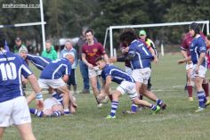 Old Boys v Point Seniors 0019