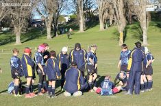 Scone Junior Rugby 0003