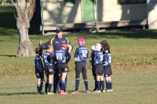 Scone Junior Rugby 0007