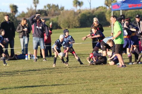 Scone Junior Rugby 0027