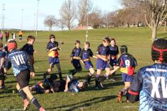 Scone Junior Rugby 0030