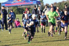 Scone Junior Rugby 0031