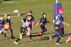 Scone Junior Rugby 0033