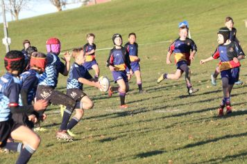 Scone Junior Rugby 0037