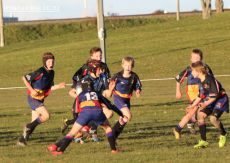 Scone Junior Rugby 0039