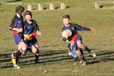 Scone Junior Rugby 0042