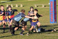 Scone Junior Rugby 0043