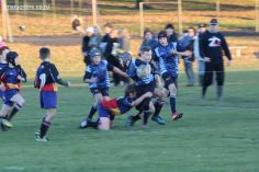 Scone Junior Rugby 0086