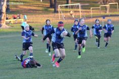 Scone Junior Rugby 0090