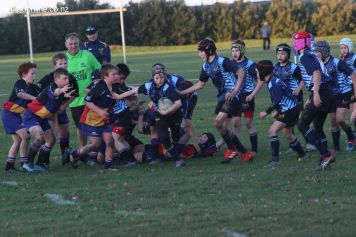 Scone Junior Rugby 0115