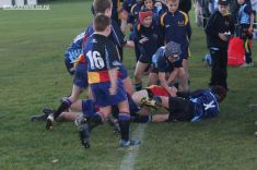 Scone Junior Rugby 0143