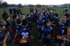 Scone Junior Rugby 0145
