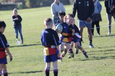 Rippa Town v Country 0012