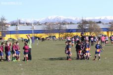 Rippa Town v Country 0023