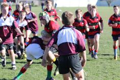 Under 12 Town v Country 0019