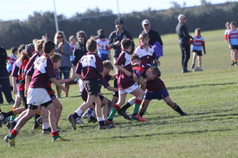 Under 12 Town v Country 0031