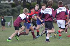 Under 12 Town v Country 0061