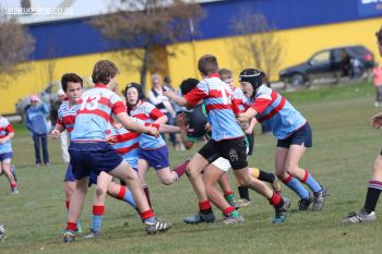 Under 13 Town v Country 0015