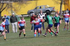 Under 13 Town v Country 0018
