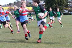 Under 13 Town v Country 0033