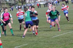 Under 13 Town v Country 0064