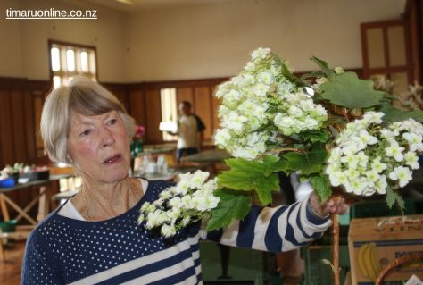 Horticultural Society Show 0014