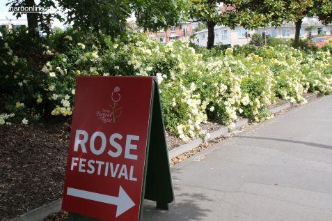 Rose Festival 0001
